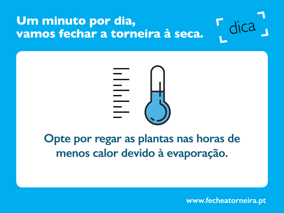 Dica_11_-_Regue_as_plantas_nas_horas_de_menos_calor-min
